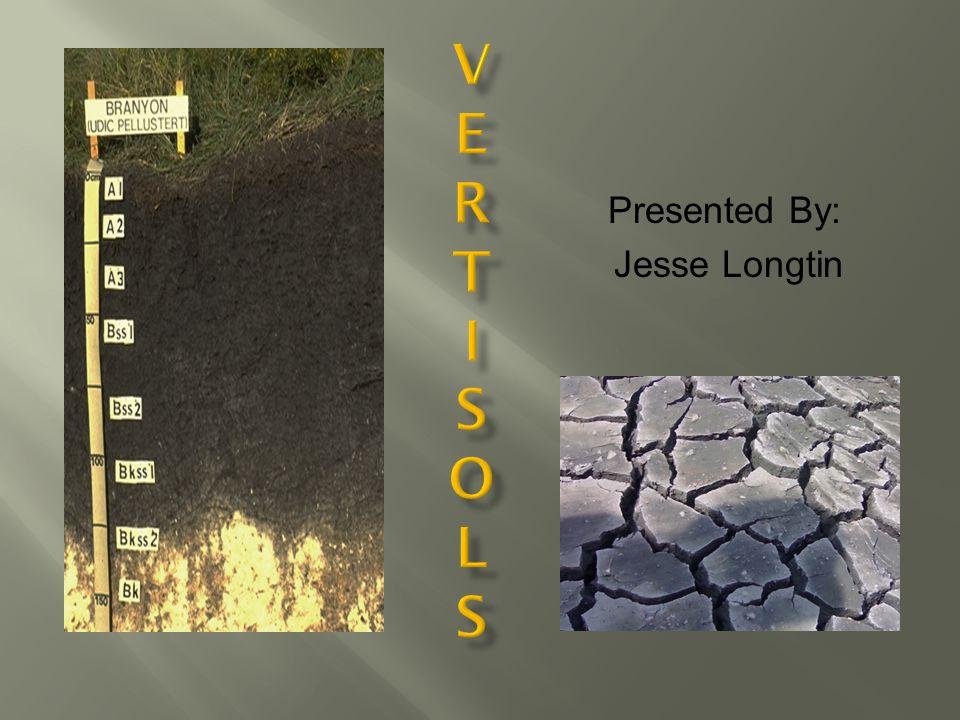 Presented By: Jesse Longtin