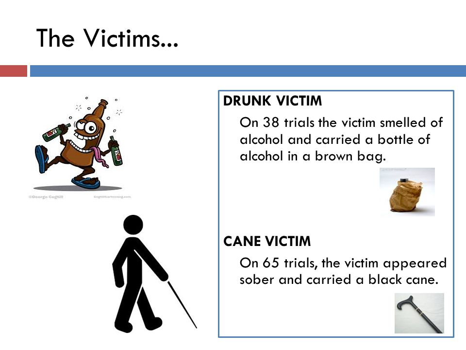 The Victims... DRUNK VICTIM On 38 trials the victim smelled of alcohol and carried a bottle of alcohol in a brown bag. CANE VICTIM On 65 trials, the v