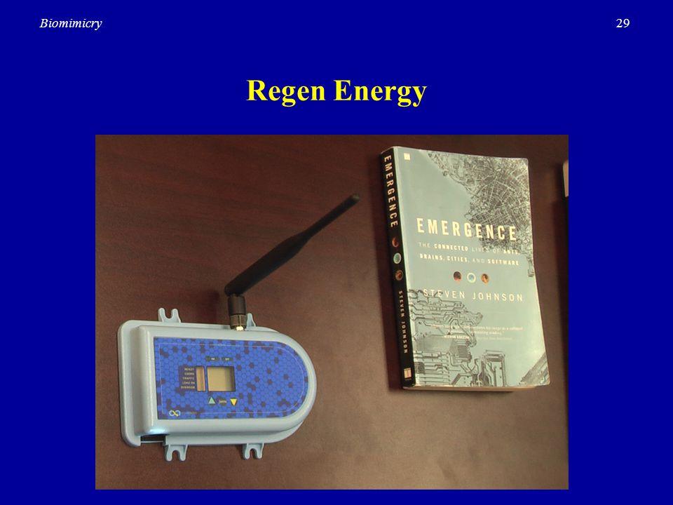 29Biomimicry Regen Energy