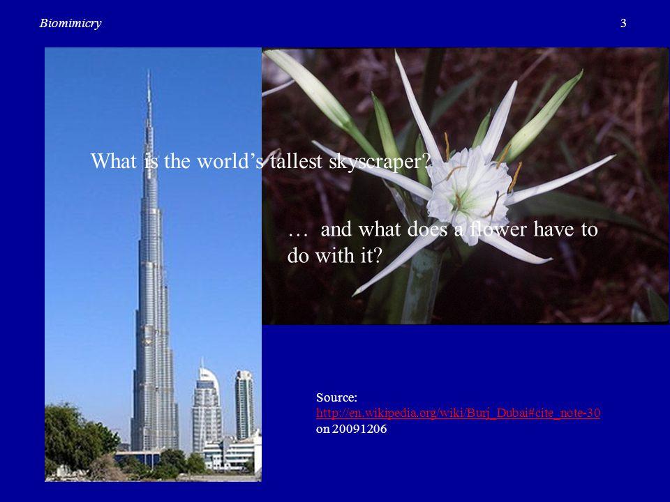 3Biomimicry Source: http://en.wikipedia.org/wiki/Burj_Dubai#cite_note-30 on 20091206 http://en.wikipedia.org/wiki/Burj_Dubai#cite_note-30 What is the
