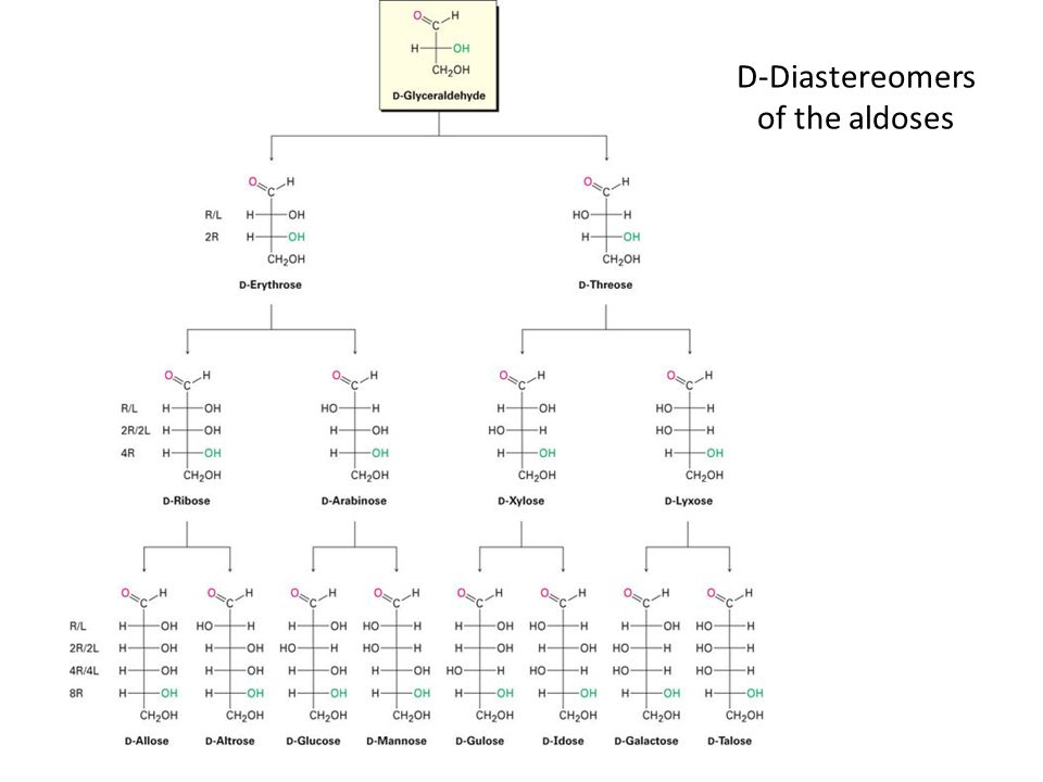D-Diastereomers of the aldoses