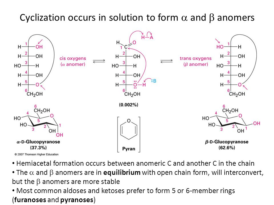 Hemiacetal formation occurs between anomeric C and another C in the chain The  and  anomers are in equilibrium with open chain form, will interconvert, but the  anomers are more stable Most common aldoses and ketoses prefer to form 5 or 6-member rings (furanoses and pyranoses) Cyclization occurs in solution to form  and  anomers