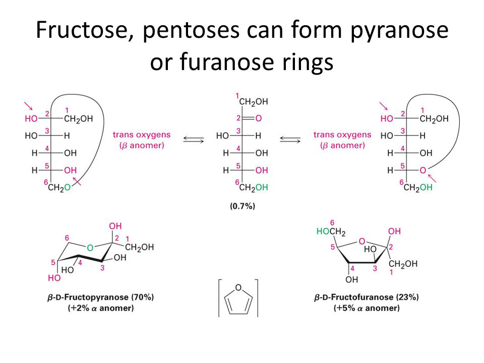 Fructose, pentoses can form pyranose or furanose rings
