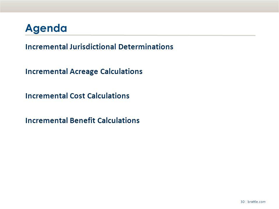   brattle.com30 Agenda Incremental Jurisdictional Determinations Incremental Acreage Calculations Incremental Cost Calculations Incremental Benefit Calculations