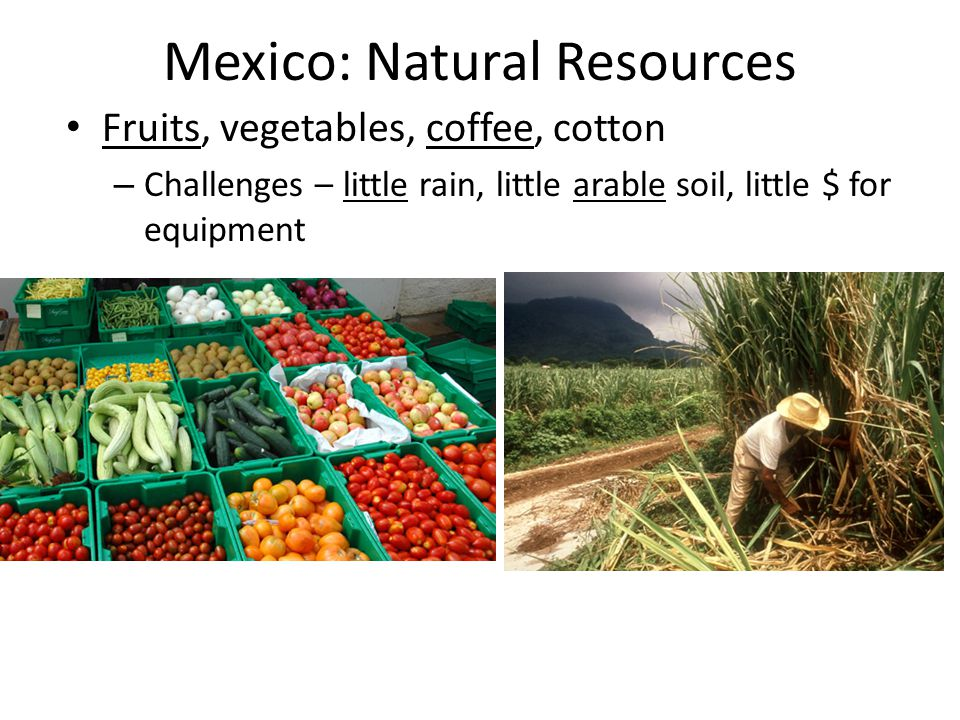 Mexico: Natural Resources Fruits, vegetables, coffee, cotton – Challenges – little rain, little arable soil, little $ for equipment