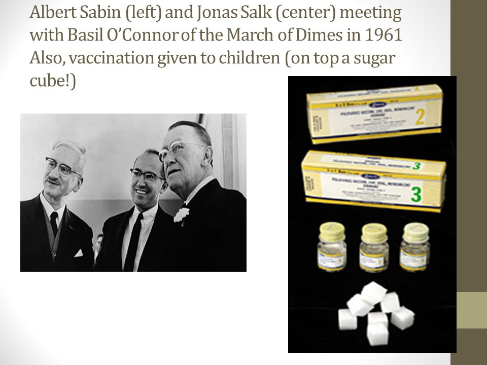 Albert Sabin (left) and Jonas Salk (center) meeting with Basil O'Connor of the March of Dimes in 1961 Also, vaccination given to children (on top a sugar cube!)