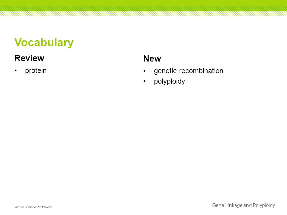 Review protein New genetic recombination polyploidy Gene Linkage and Polyploidy Copyright © McGraw-Hill Education Vocabulary