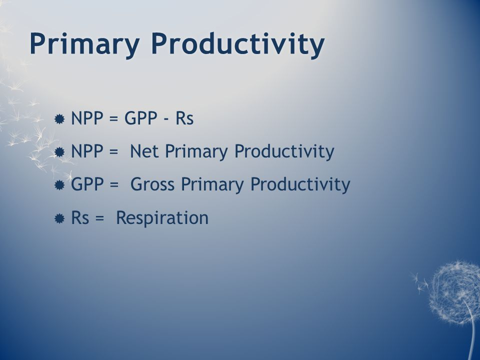 Primary ProductivityPrimary Productivity  NPP = GPP - Rs  NPP = Net Primary Productivity  GPP = Gross Primary Productivity  Rs = Respiration