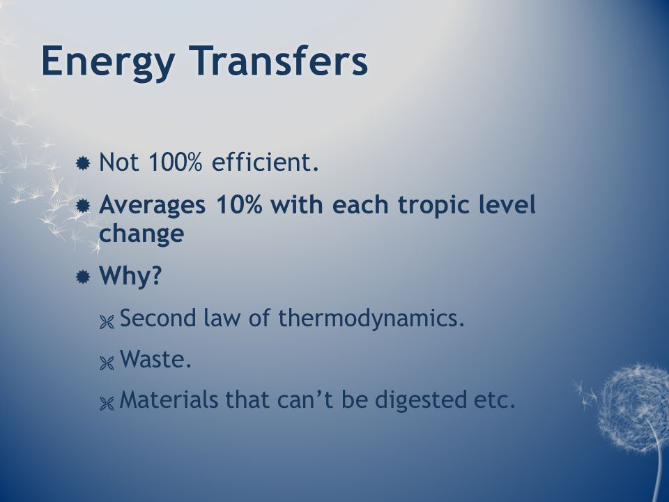 Energy TransfersEnergy Transfers  Not 100% efficient.  Averages 10% with each tropic level change  Why?  Second law of thermodynamics.  Waste. 