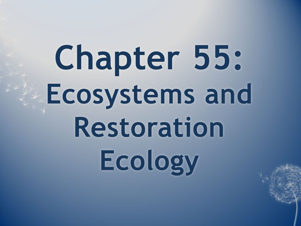 Chapter 55: Ecosystems and Restoration Ecology