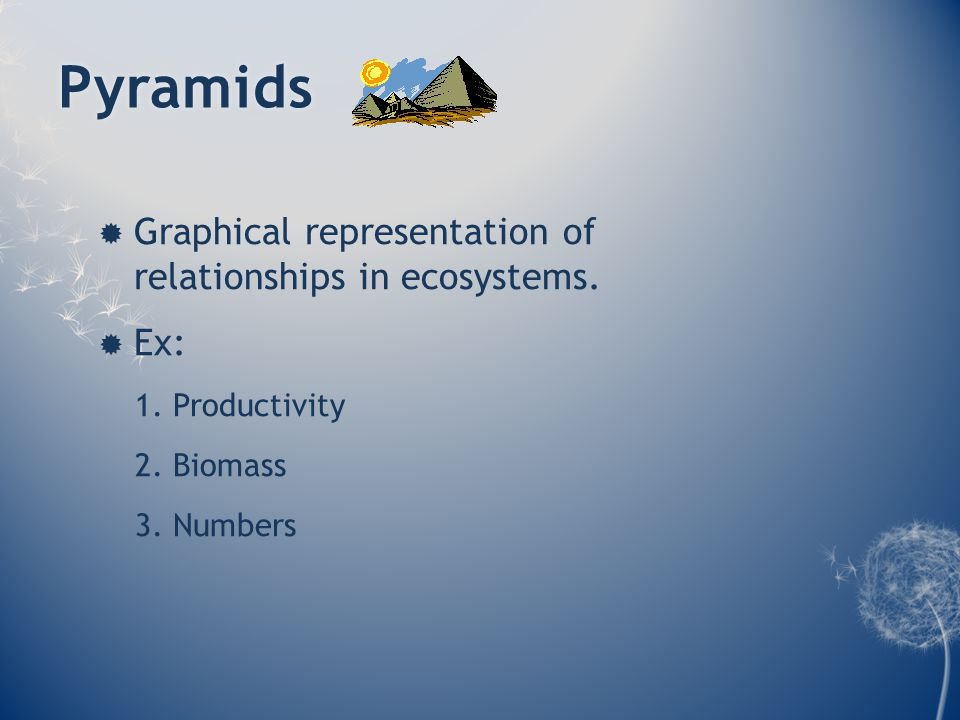 Pyramids  Graphical representation of relationships in ecosystems.
