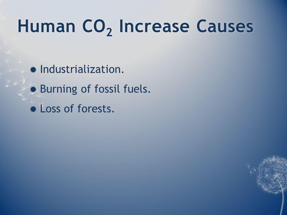 Human CO 2 Increase CausesHuman CO 2 Increase Causes  Industrialization.