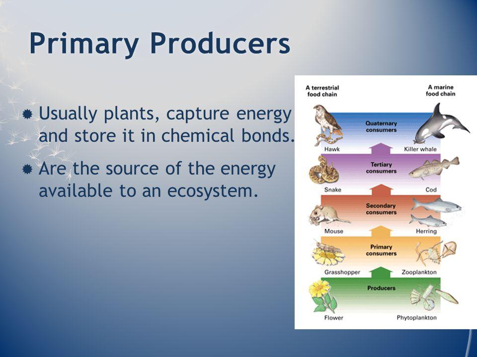 Energy TransfersEnergy Transfers  Not 100% efficient.