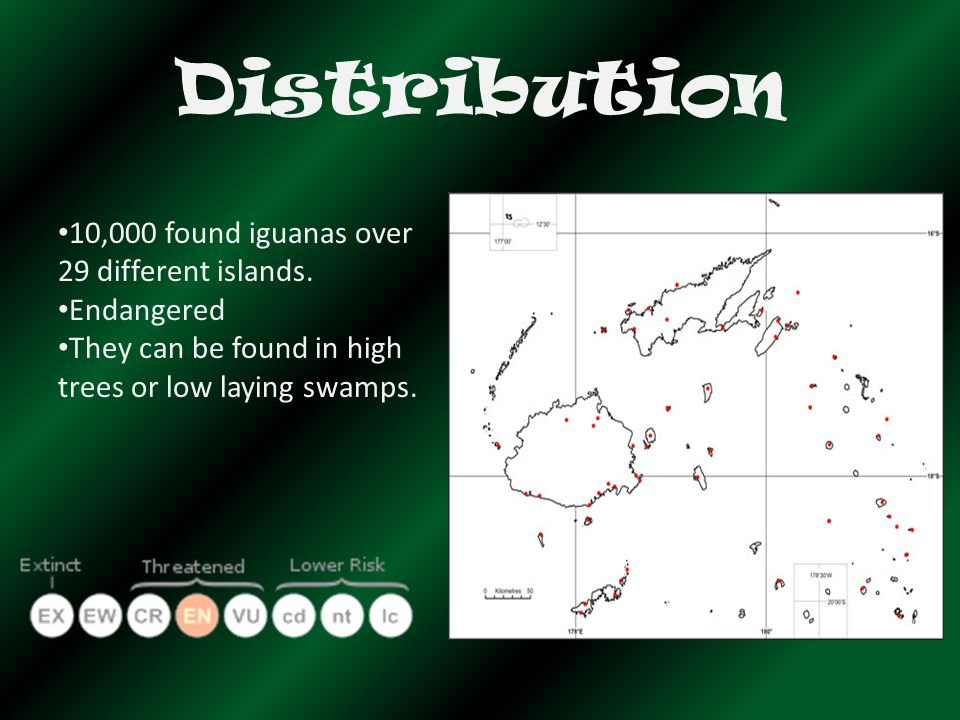 Distribution 10,000 found iguanas over 29 different islands.