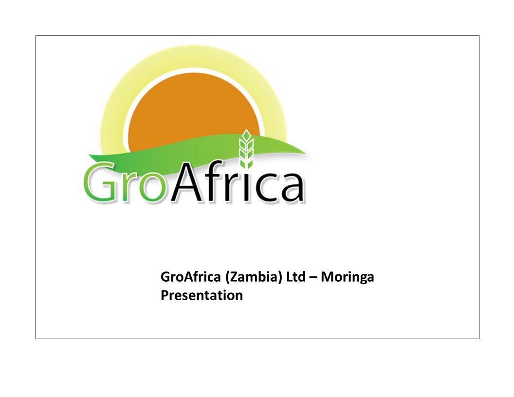 GroAfrica (Zambia) Ltd – Moringa Presentation