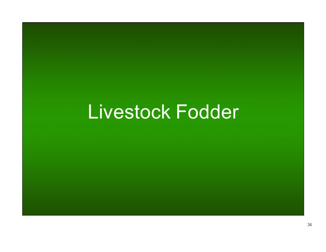 Livestock Fodder 34