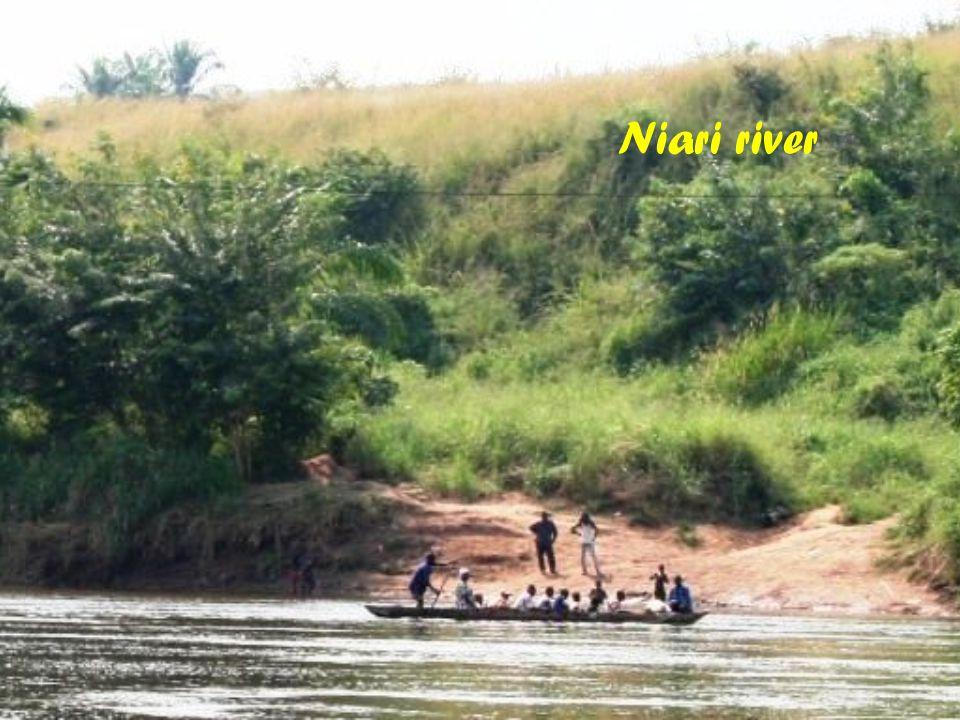 Niari river