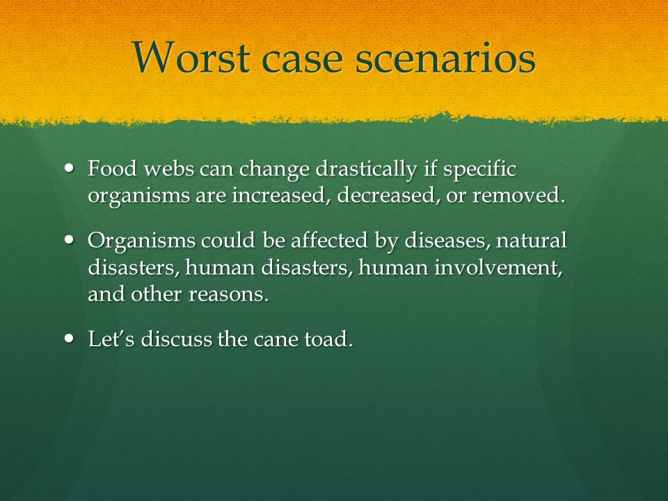 Worst case scenarios Food webs can change drastically if specific organisms are increased, decreased, or removed.