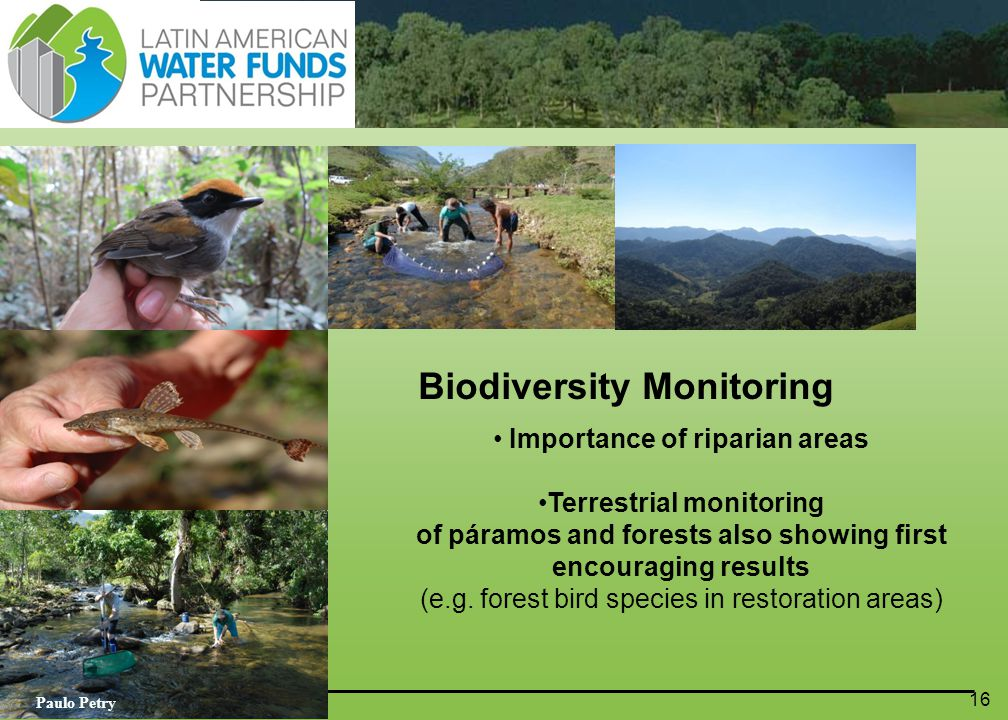 16 Biodiversity Monitoring Importance of riparian areas Terrestrial monitoring of páramos and forests also showing first encouraging results (e.g.