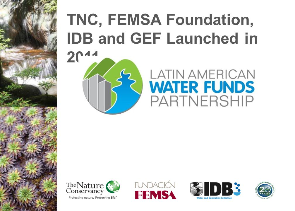 TNC, FEMSA Foundation, IDB and GEF Launched in 2011