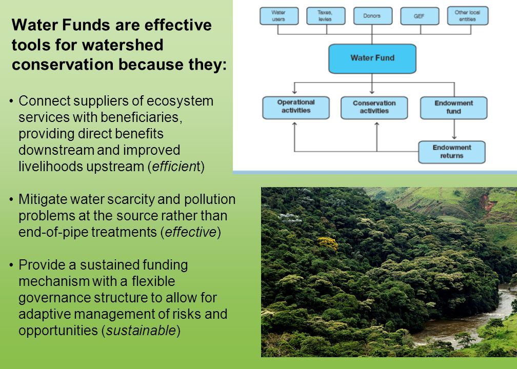 Water Funds are effective tools for watershed conservation because they: Connect suppliers of ecosystem services with beneficiaries, providing direct benefits downstream and improved livelihoods upstream (efficient) Mitigate water scarcity and pollution problems at the source rather than end-of-pipe treatments (effective) Provide a sustained funding mechanism with a flexible governance structure to allow for adaptive management of risks and opportunities (sustainable)