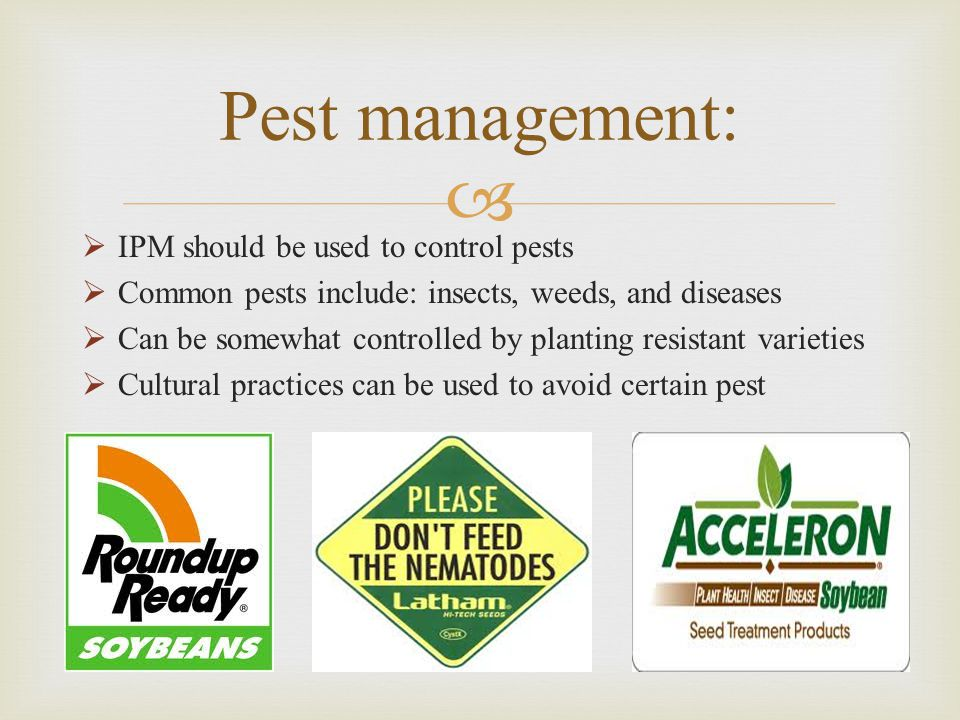   IPM should be used to control pests  Common pests include: insects, weeds, and diseases  Can be somewhat controlled by planting resistant varieties  Cultural practices can be used to avoid certain pest Pest management: