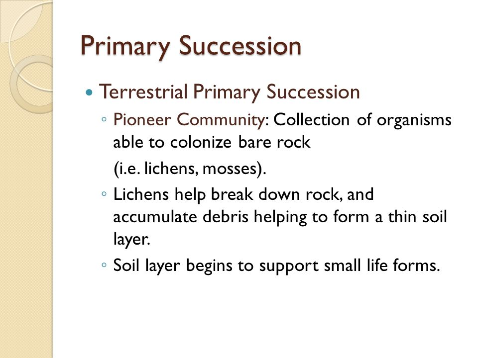 Primary Succession Terrestrial Primary Succession ◦ Pioneer Community: Collection of organisms able to colonize bare rock (i.e.
