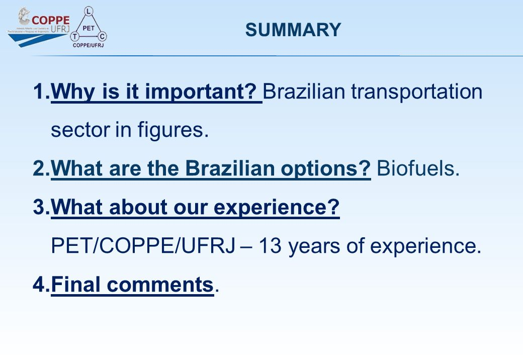 SUMMARY 1.Why is it important. Brazilian transportation sector in figures.