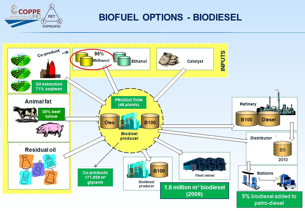 INPUTS CatalystEthanol Methanol Co-product Animal fat Residual oil PRODUCTION (48 plants) Biodisel producer Biodiesel producer Fleet owner Refinery Di