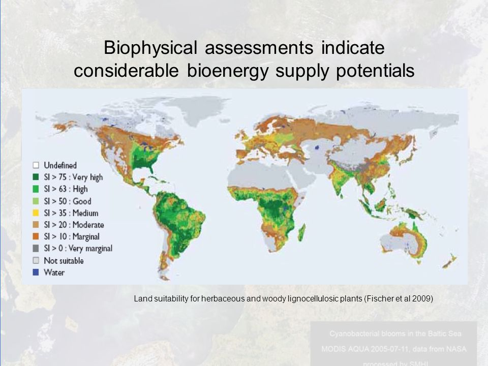 Biophysical assessments indicate considerable bioenergy supply potentials Land suitability for herbaceous and woody lignocellulosic plants (Fischer et al 2009)