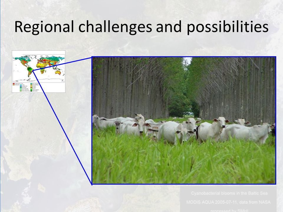Regional challenges and possibilities
