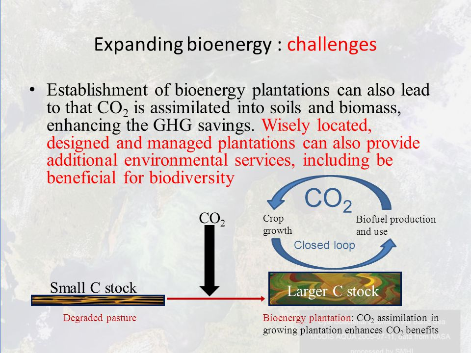 Establishment of bioenergy plantations can also lead to that CO 2 is assimilated into soils and biomass, enhancing the GHG savings.