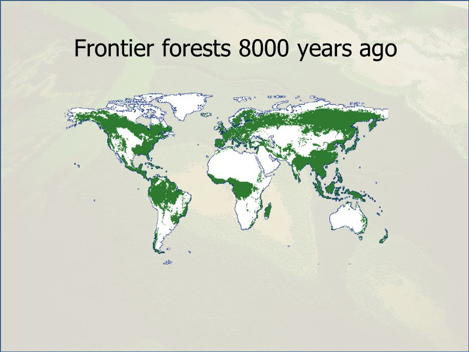 Frontier forests 8000 years ago