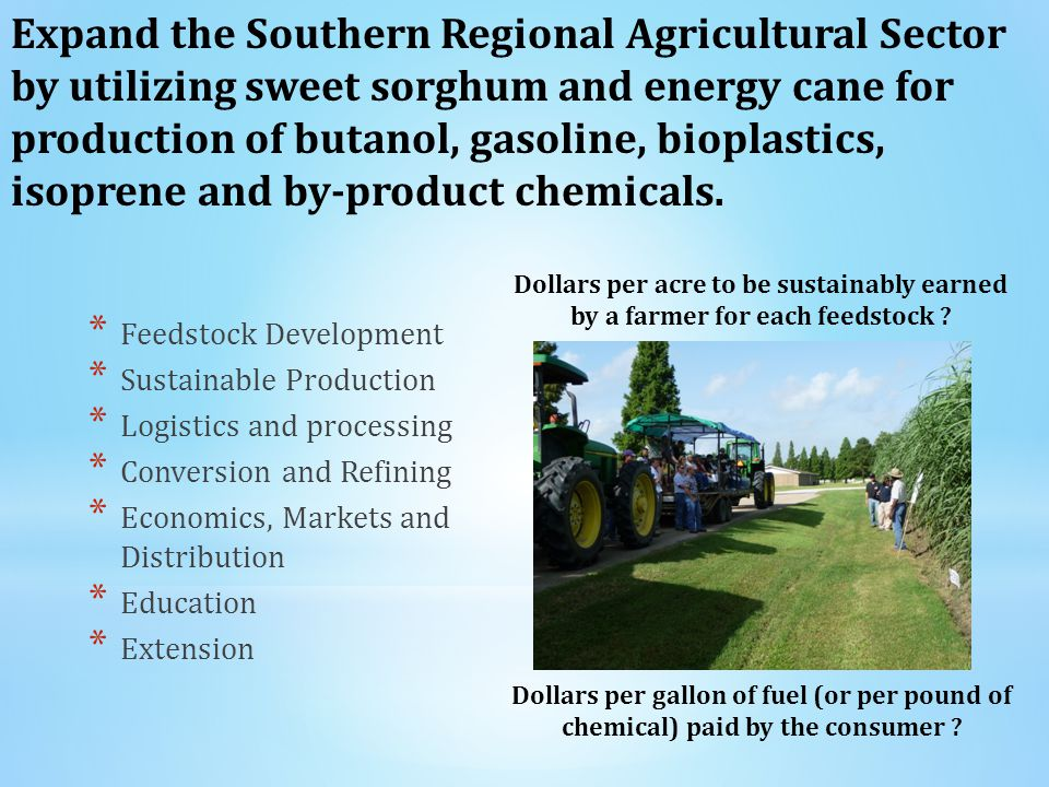 * Feedstock Development * Sustainable Production * Logistics and processing * Conversion and Refining * Economics, Markets and Distribution * Education * Extension Expand the Southern Regional Agricultural Sector by utilizing sweet sorghum and energy cane for production of butanol, gasoline, bioplastics, isoprene and by-product chemicals.