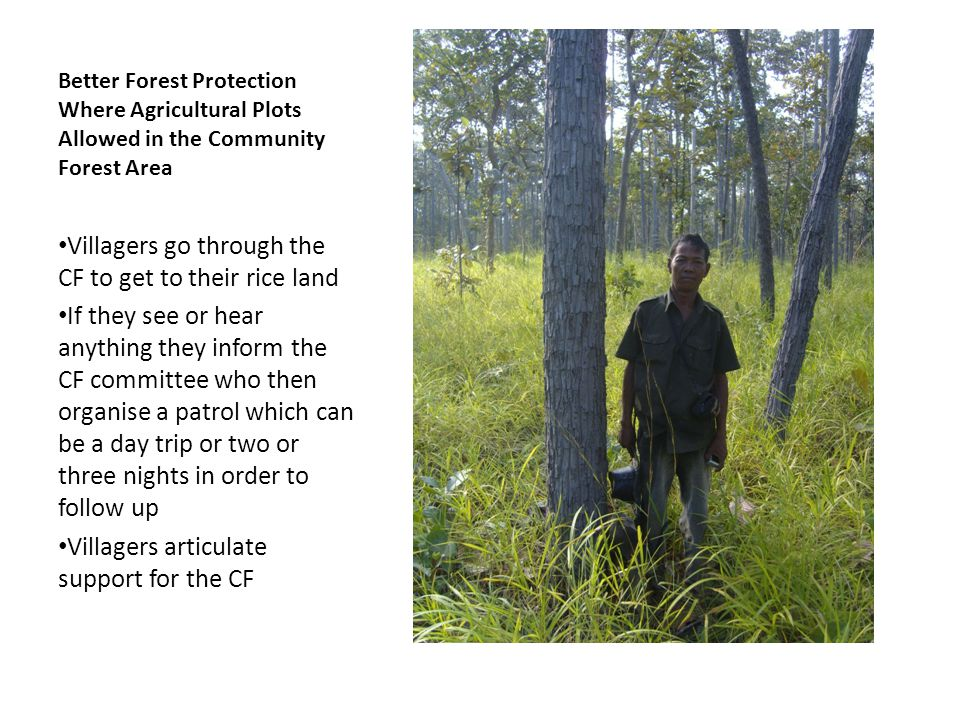 Better Forest Protection Where Agricultural Plots Allowed in the Community Forest Area Villagers go through the CF to get to their rice land If they see or hear anything they inform the CF committee who then organise a patrol which can be a day trip or two or three nights in order to follow up Villagers articulate support for the CF