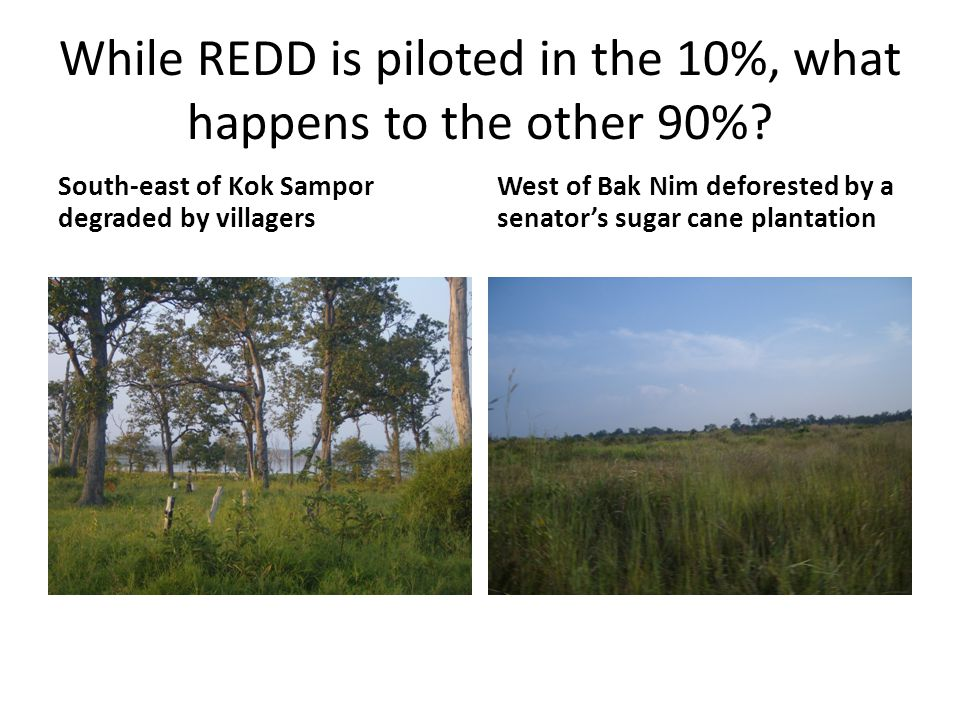 While REDD is piloted in the 10%, what happens to the other 90%.