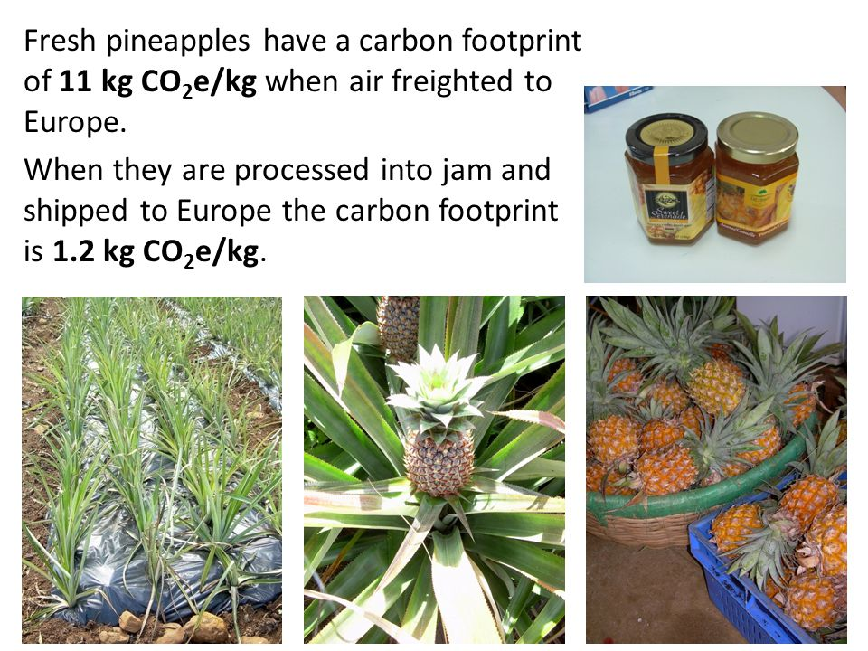 Fresh pineapples have a carbon footprint of 11 kg CO 2 e/kg when air freighted to Europe.