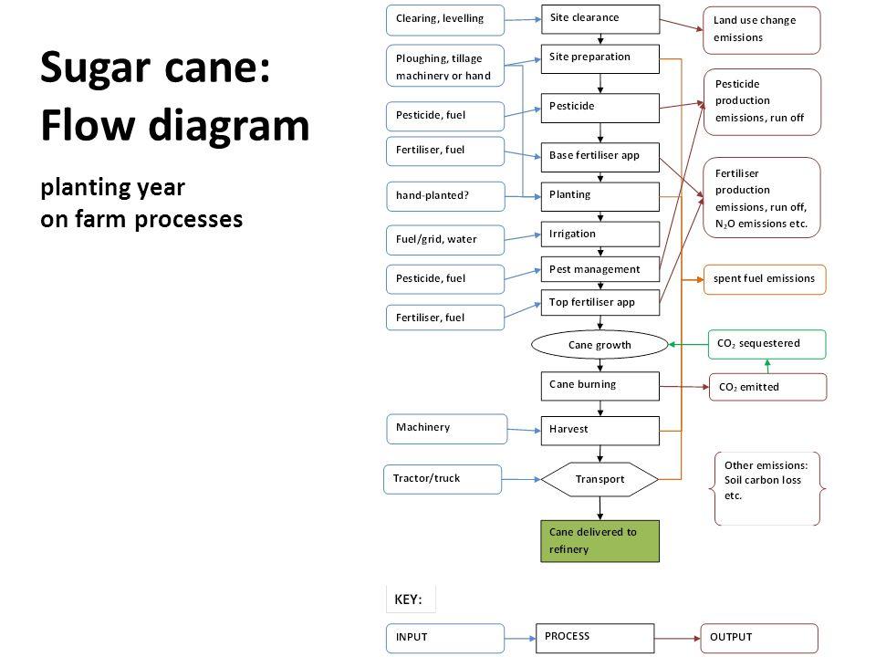 Sugar cane: Flow diagram planting year on farm processes