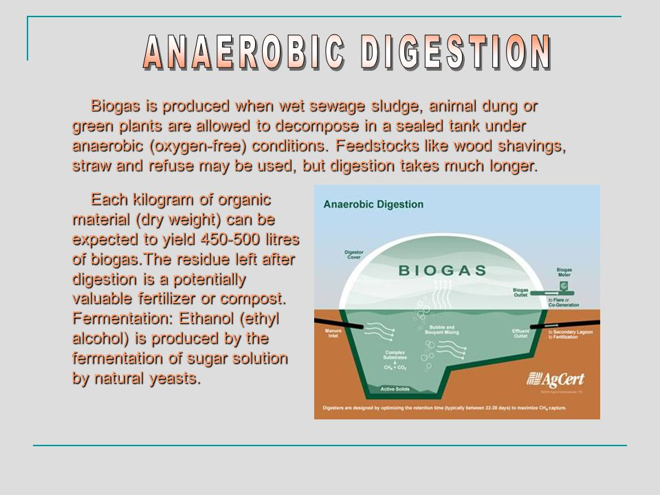 Biogas is produced when wet sewage sludge, animal dung or green plants are allowed to decompose in a sealed tank under anaerobic (oxygen-free) conditions.