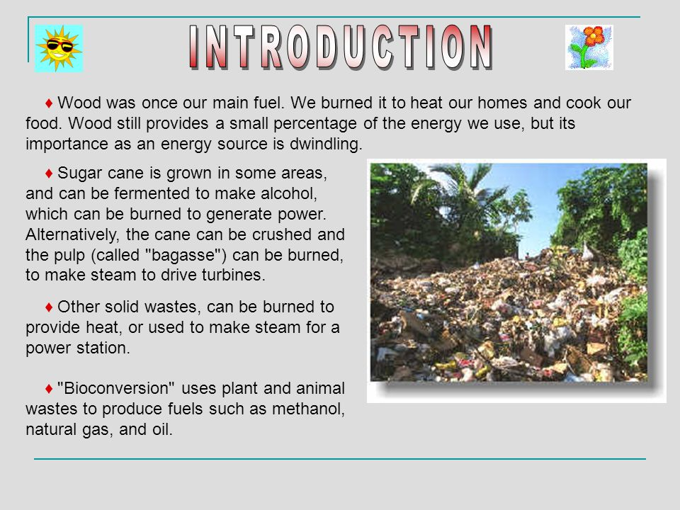 ♦ Sugar cane is grown in some areas, and can be fermented to make alcohol, which can be burned to generate power. Alternatively, the cane can be crush