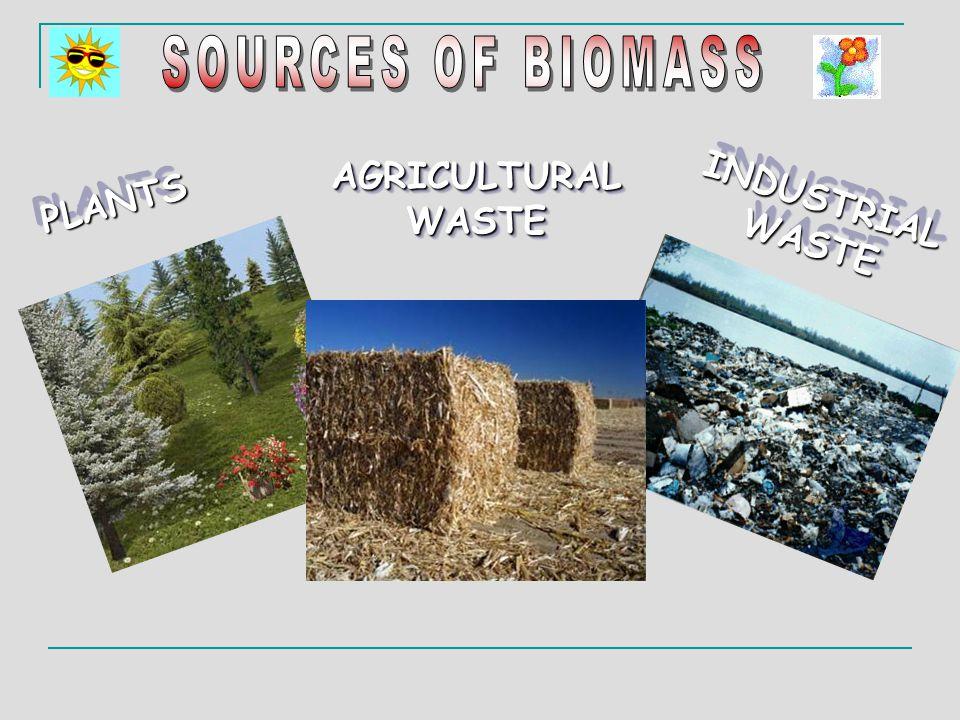 ♦ Biomass is very abundant.