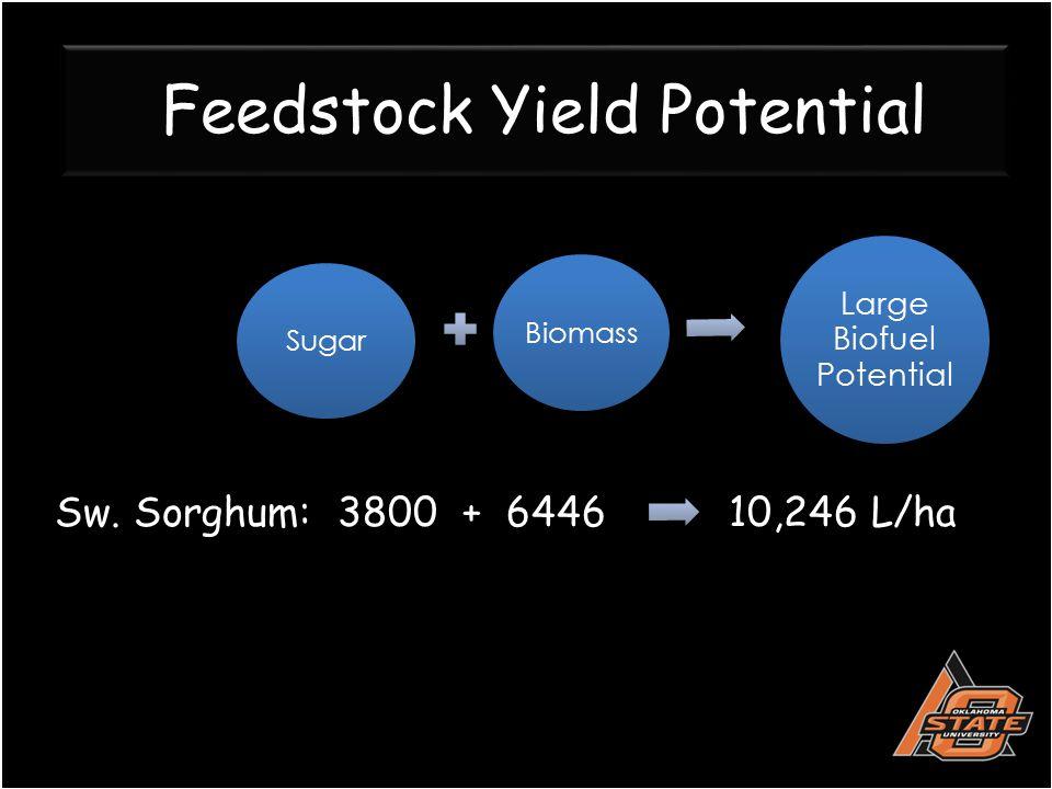Feedstock Yield Potential Sugar Biomass Large Biofuel Potential Sw. Sorghum: 3800 + 6446 10,246 L/ha