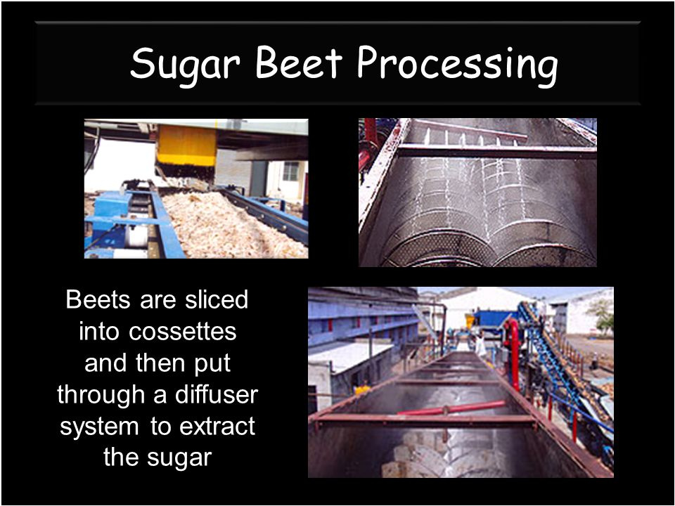 Sugar Beet Processing Beets are sliced into cossettes and then put through a diffuser system to extract the sugar