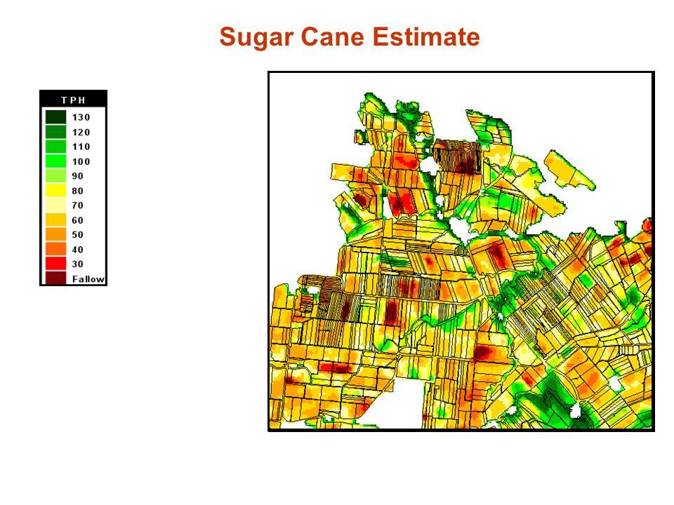 Sugar Cane Estimate