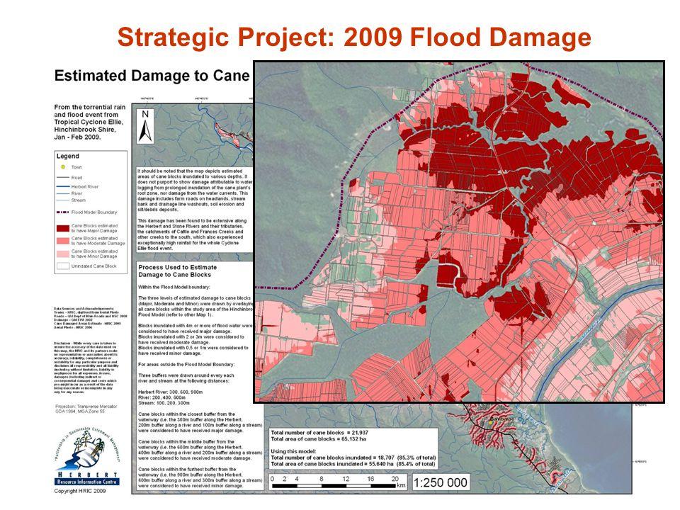 Strategic Project: 2009 Flood Damage