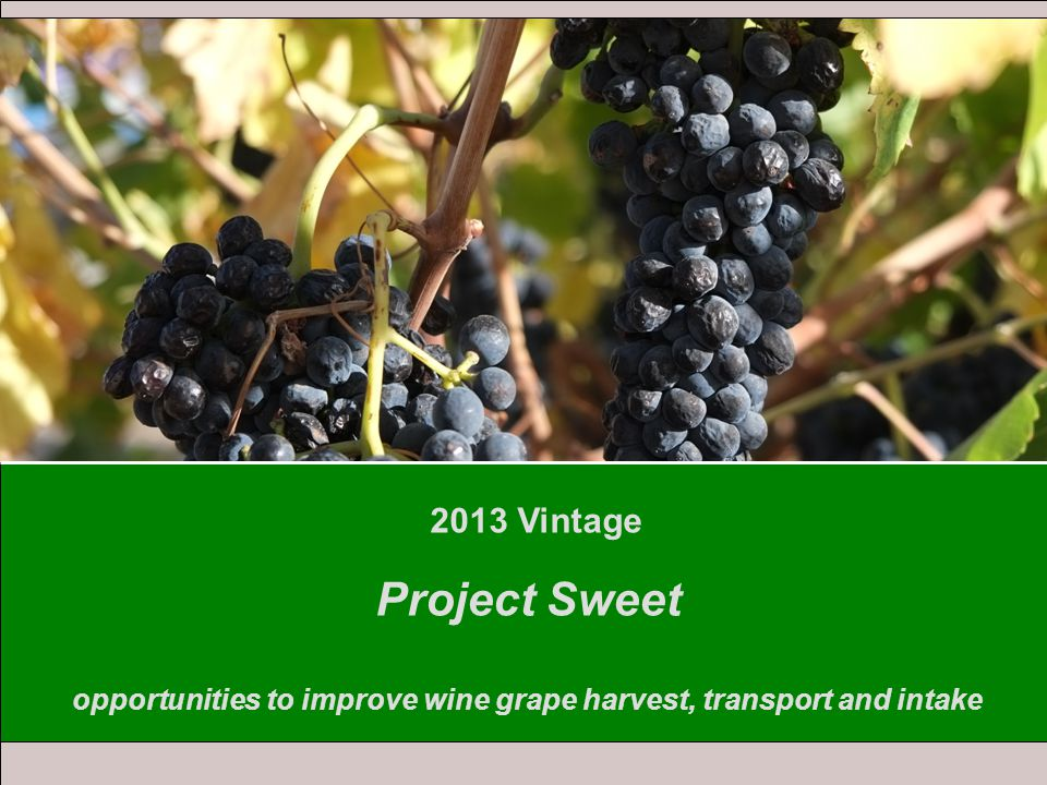 2013 Vintage Project Sweet opportunities to improve wine grape harvest, transport and intake