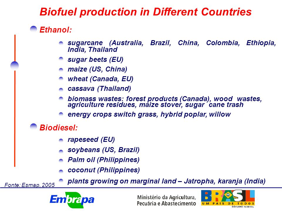 Near term: ethanol from sugarcane: best overall commercial chance biofuel trade liberalization biodiesel remains expensive relative to world oil prices Medium term: fall in production costs new feedstocks growing trade Long term: increase in commercialization of cellulosic ethanol higher oil prices favoring biofuel economics Prospects for biofuels Fonte: Esmap, 2005