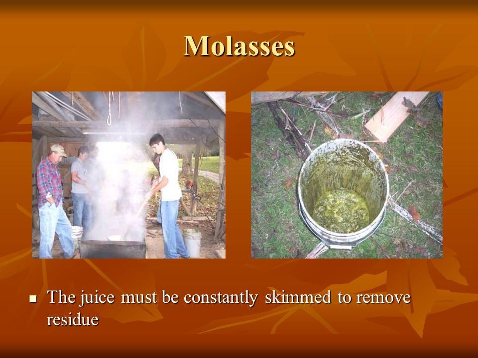 Molasses The juice must maintain a boiling temperature for about six hours to make the liquid a thick, golden-brown syrup The juice must maintain a boiling temperature for about six hours to make the liquid a thick, golden-brown syrup