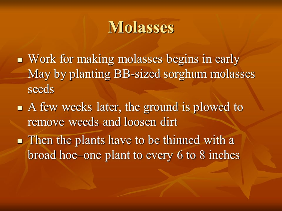 Molasses Molasses has become more scarce, because sugar is more available and cheap Molasses has become more scarce, because sugar is more available and cheap Another reason for scarcity is the tremendous amount of labor involved in making molasses Another reason for scarcity is the tremendous amount of labor involved in making molasses Nowadays, molasses making has become more of a novelty than a necessity with modern shopping Nowadays, molasses making has become more of a novelty than a necessity with modern shopping