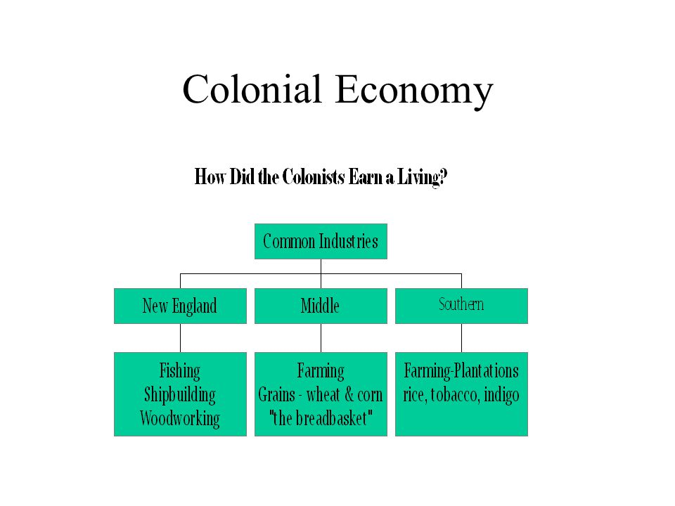 Southern Economy Large farms that often grew only one crop were called plantations.